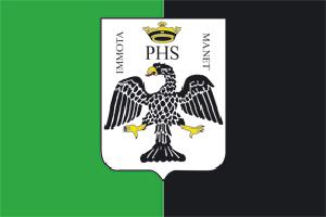 Bandiere delle città: L'Aquila