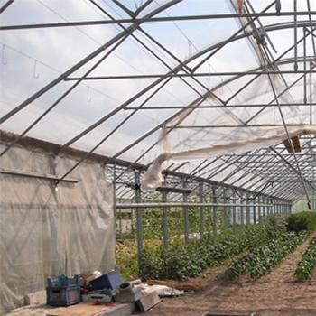 coperture agricole